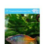 OATA Rainbow fish care sheet