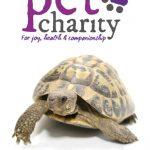 TPC Tortoise care sheet