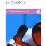 OATA Clownfish, Damsels, Chromis and Basslets care sheet