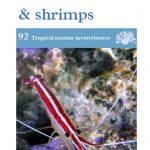 OATA Marine molluscs, crabs and shrimps care sheet
