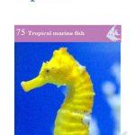 OATA Seahorse and Pipefish care sheet